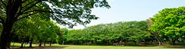 野球場・温水プール等もある総合公園…引地台(ひきちだい)公園