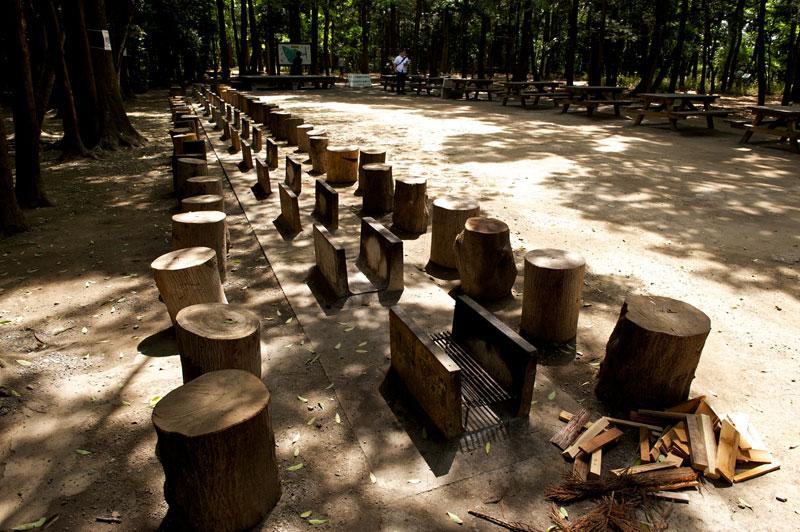 神奈川県 泉の森ふれあいキャンプ場 の写真g6093