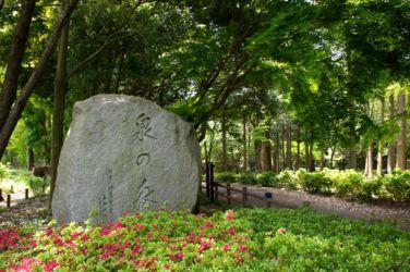 泉の森 園名石