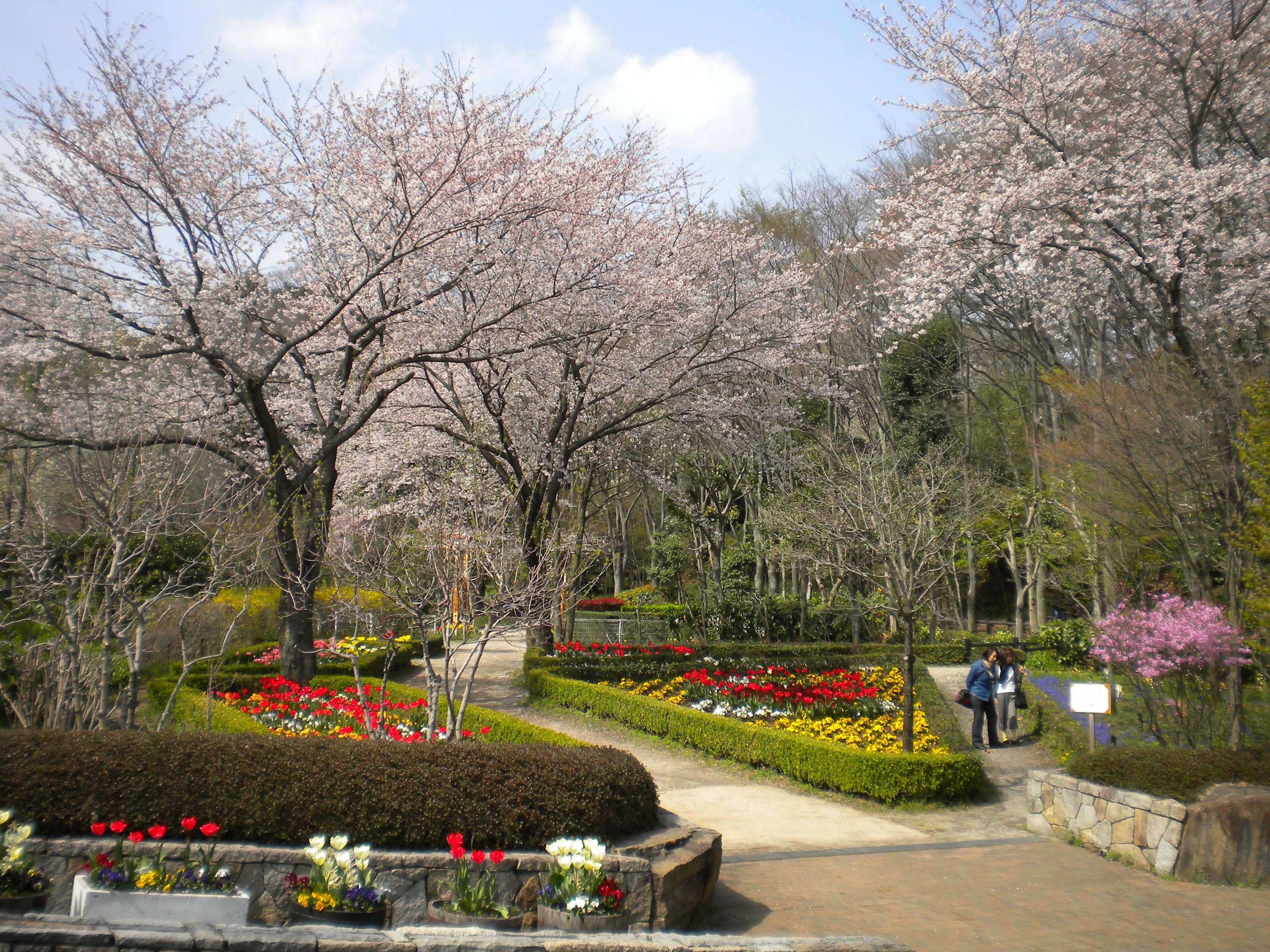 緑の見本園