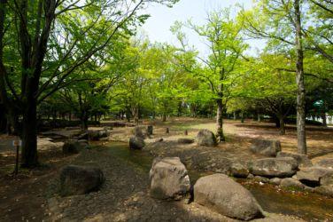 hikichidai_6605