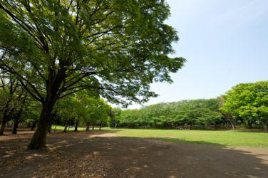hikichidai_6629