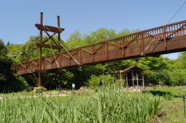 泉の森 みどりのかけ橋